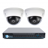4 Ch NVR & 2 HD Megapixel IR Mini Dome (2MP, 3MP, 4MP Options) Kit for Business Professional Grade