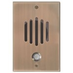 DP-0232C Channel Vision Front Door DP-Large Faceplate, No Camera, Antique Brass Finish, CAT5 Intercom