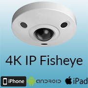 4K Fisheye Demo