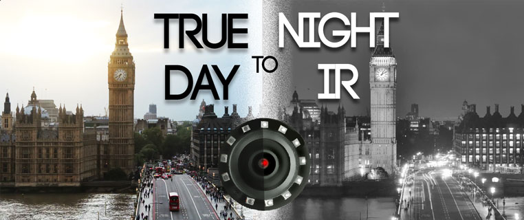 true day and night